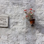 a wall with flowers in Arequipa, Peru