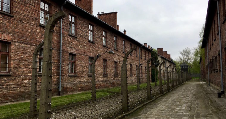 Photo Essay: My Rainy Day Visit to Auschwitz-Birkenau