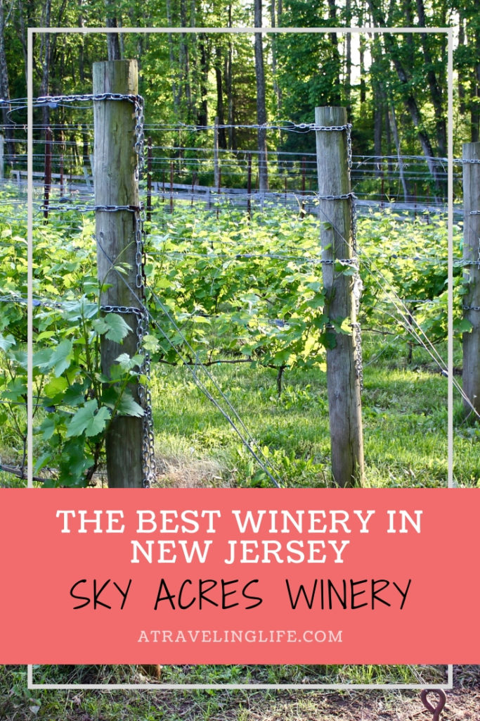Not only is Sky Acres Winery in Bedminster, New Jersey, the Best Winery in New Jersey, it also doesn't use any water in production, so it's an eco-friendly and sustainable operation! New Jersey wineries | New Jersey wine trail #visitNJ #sustainability #wine